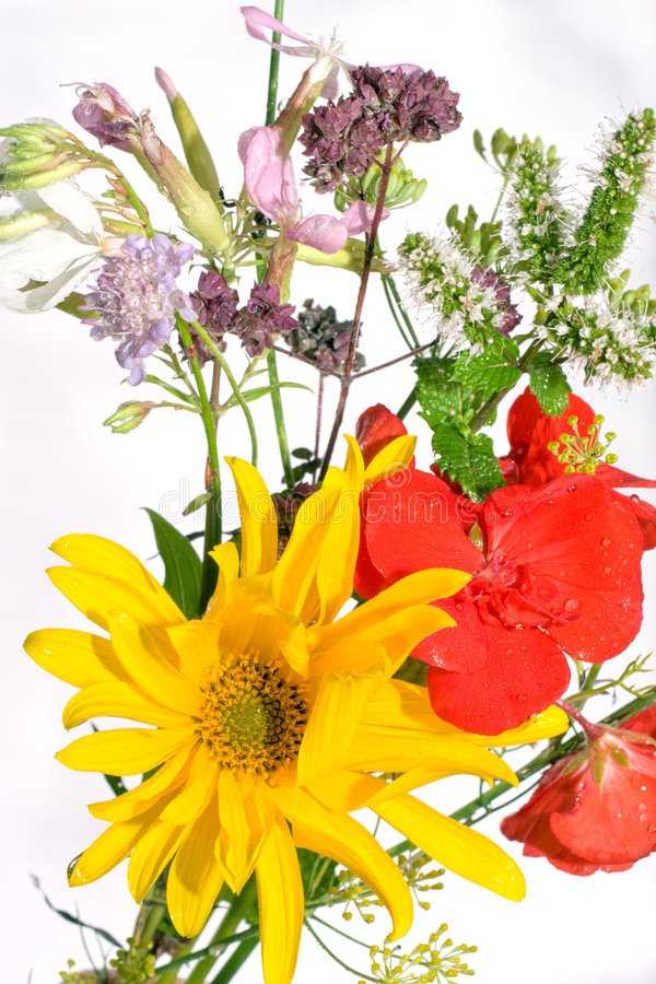 Gemengde bloemen royalty-vrije stock foto's