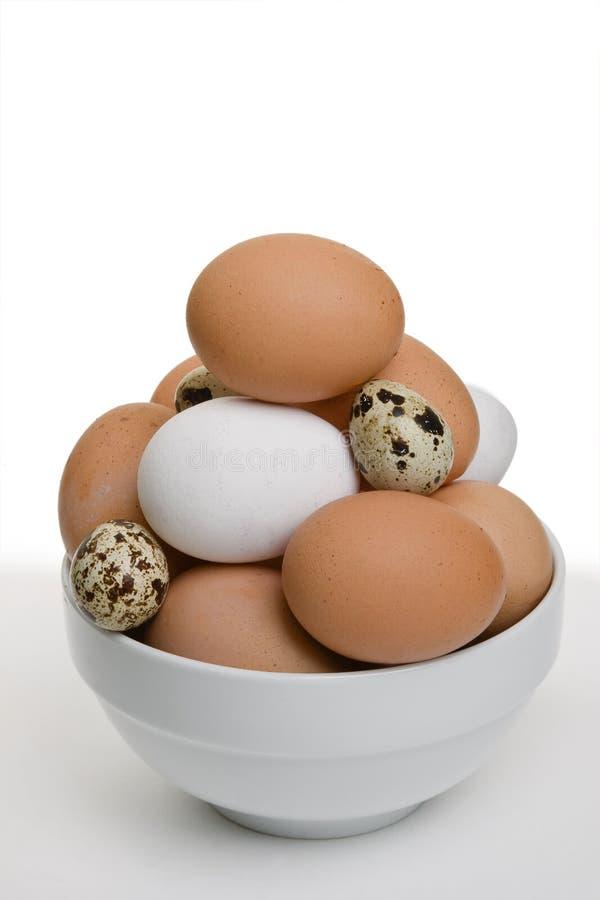 Gemengde Eieren royalty-vrije stock afbeeldingen