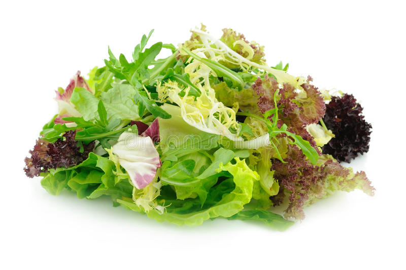 Gemengde groene salade stock afbeelding