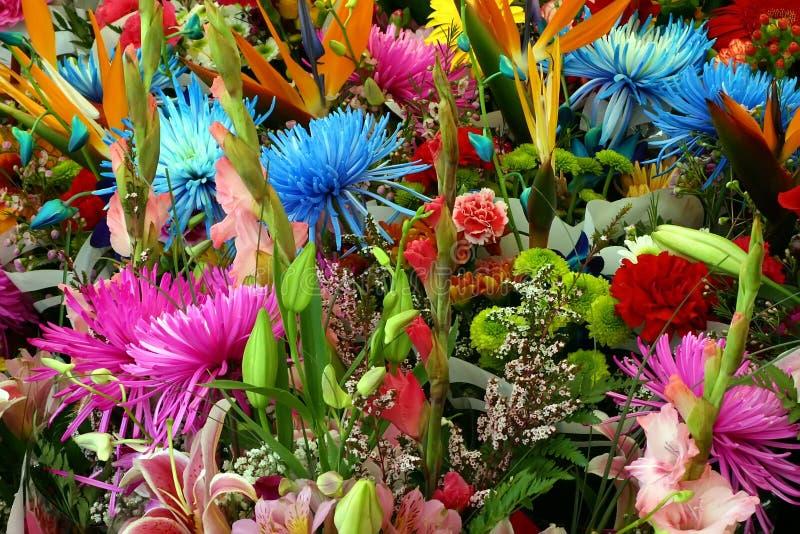 Gemengde Multicolored Bloemen royalty-vrije stock afbeelding