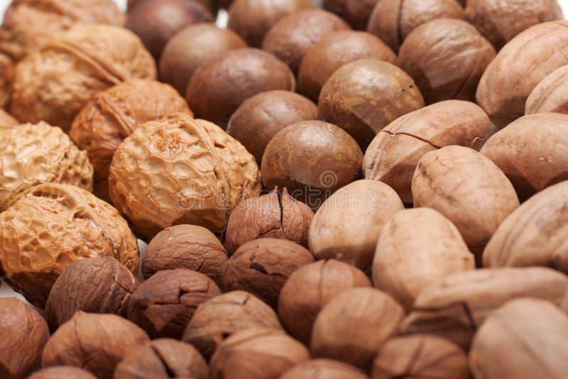 Gemengde noten stock fotografie