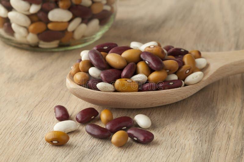 Gemengde organische kleurrijke bonen royalty-vrije stock foto