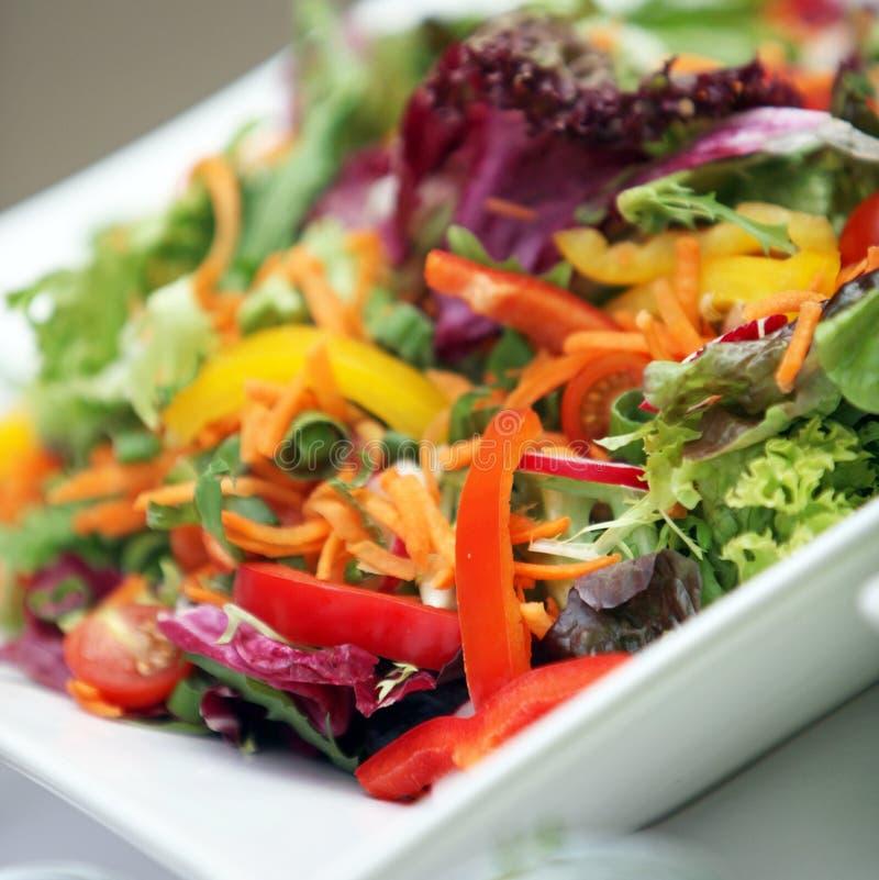 Gemengde verse salade van diverse groenten - royalty-vrije stock foto