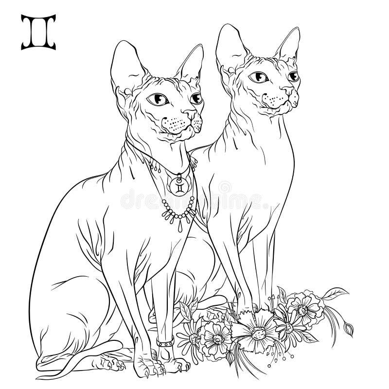 Free Gemini Cat Zodiac Line Art Stock Images - 171776994