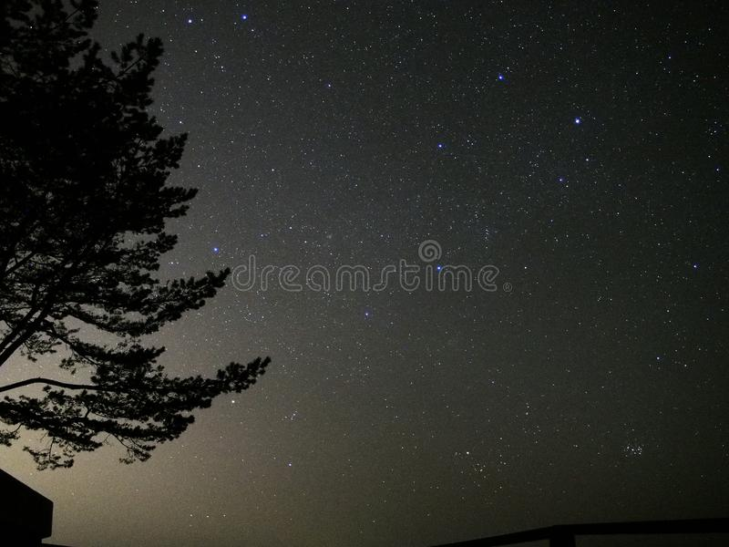 Gemini constellation and star cluster Pleiades after sunset. Gemini constellation and star cluster Pleiades M45 observing, over sea, after sunset royalty free stock photos