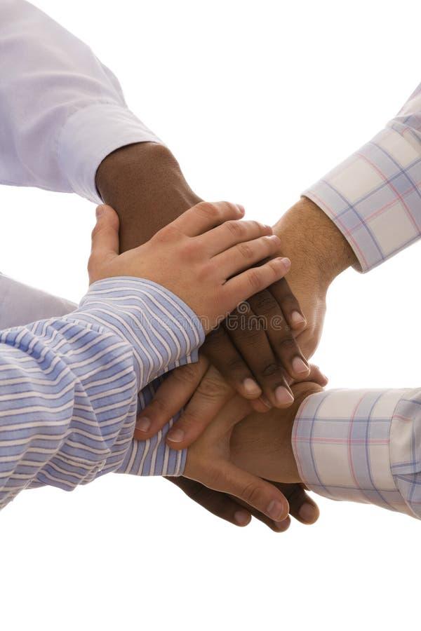 Gemischtrassige Hände stockbild