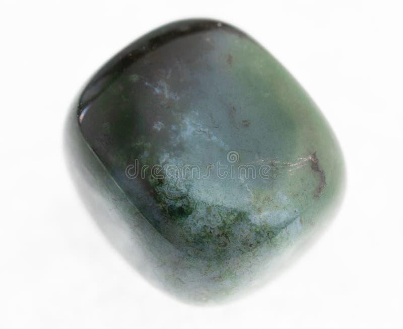 gemma lucidata della valeriana (eliotropio) su bianco immagine stock libera da diritti