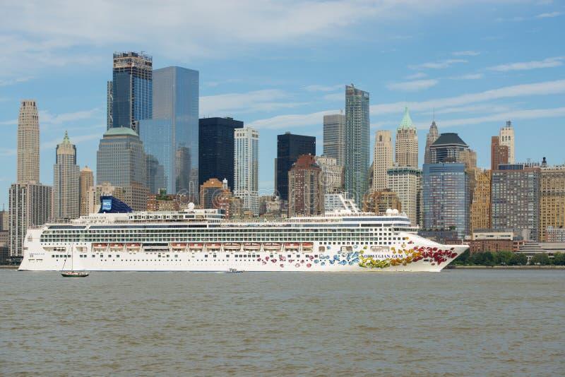Gemma norvegese su Hudson River, New York, U.S.A. immagini stock