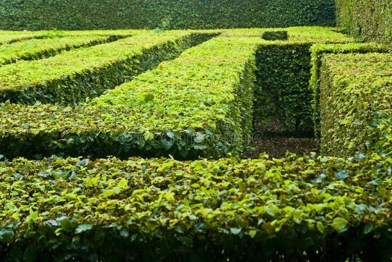 Gemodelleerd labyrint in park stock foto