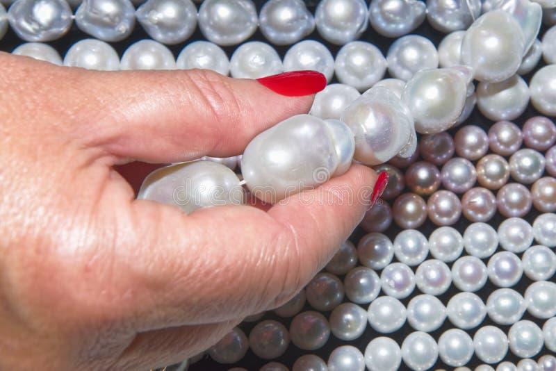 Gemologisten bedömer kvalitet av pärlor royaltyfri foto
