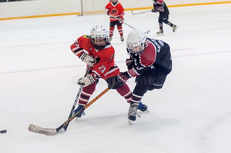 Gemowy moment dziecko hokeja drużyny obrazy stock