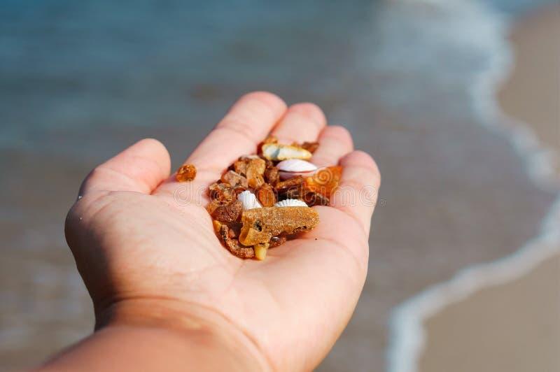 Gemston ambarino, pequeñas piedras del ámbar en la palma de su mano, piedra preciosa ambarina foto de archivo libre de regalías