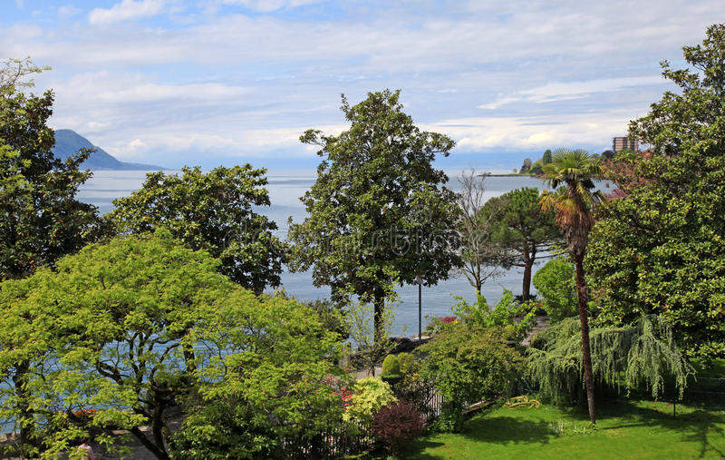 Genève sjö och träd, Montreux, Schweiz royaltyfri fotografi