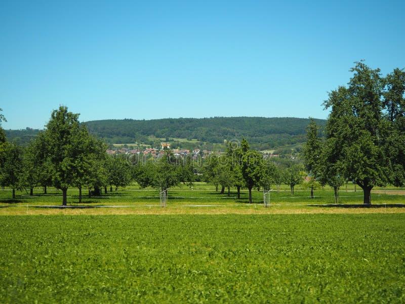 GENÈVE, ZWITSERLAND - 31 MEI 2017: Mooie mening in het meer van Genève en cityscape van Genève stock foto's
