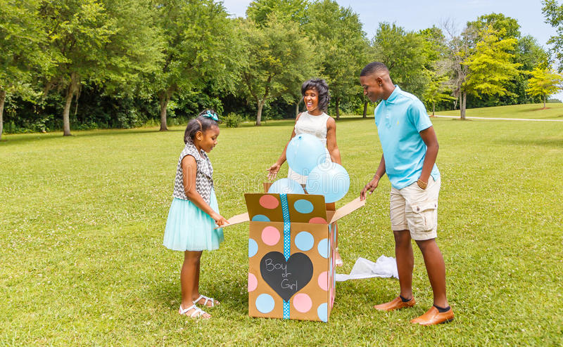 Gender Reveal, Expecting Mother to Two Children stock photography