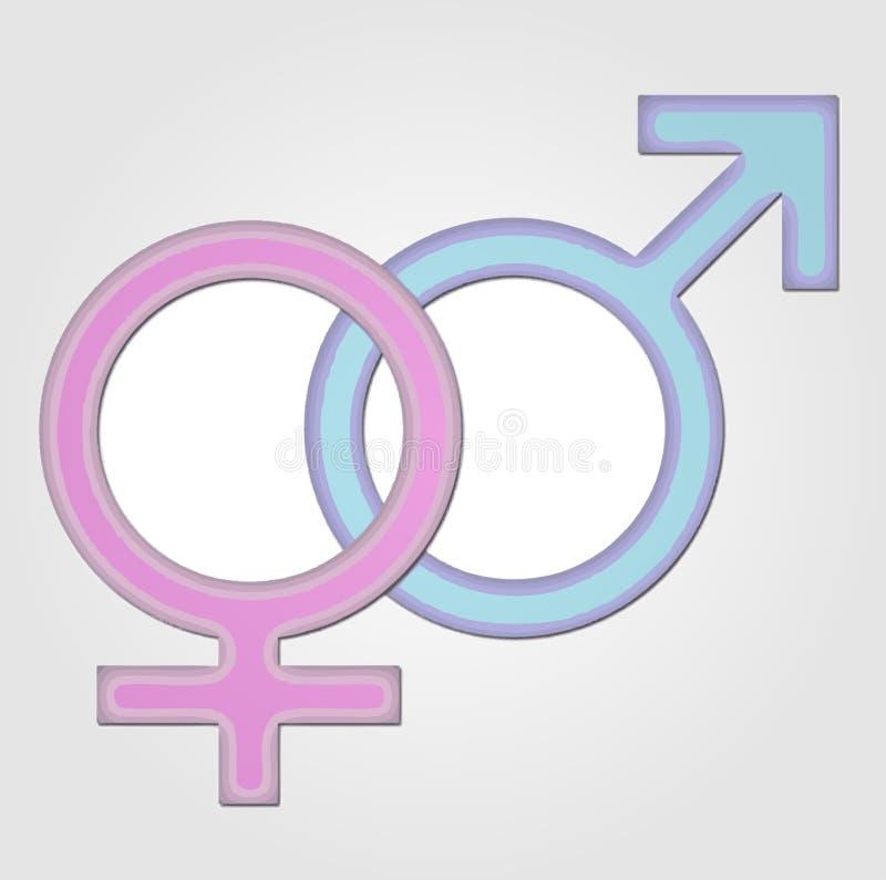 Gender Symbol Girl And Boy Stock Vector Illustration Of Gentleman