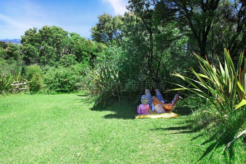 Gene e caçoe o encontro na grama à sombra das partes superiores da árvore fotos de stock