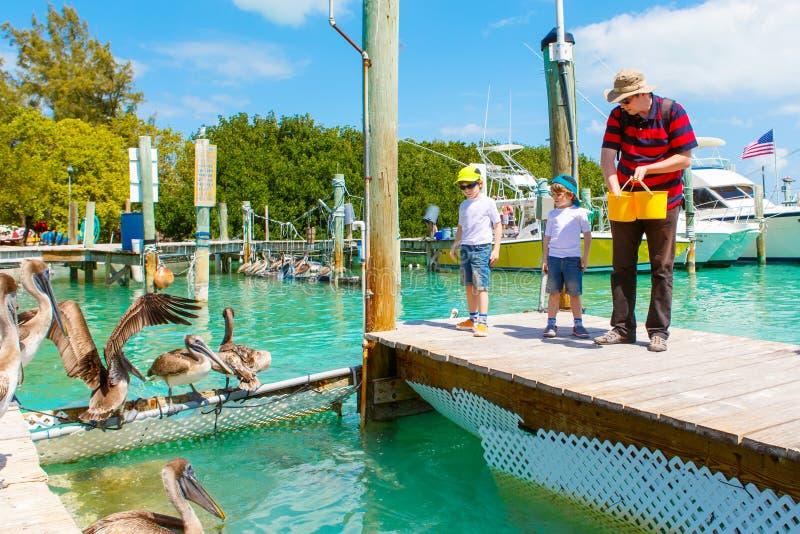 Gene e dois meninos da criança que alimentam peixes e pelicanos fotografia de stock