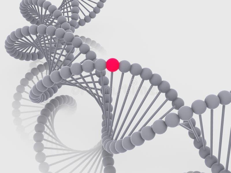 Gene en la DNA ilustración del vector