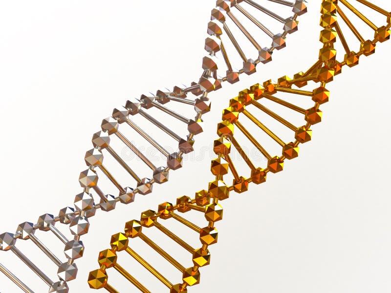 Gene no ADN. ilustração royalty free