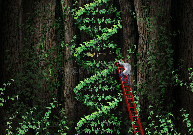Gene Therapy. DNA helix concept with a medical genetics specialist doctor on a ladder climbing a plant that represents part of the human chromosomes anatomy as stock illustration