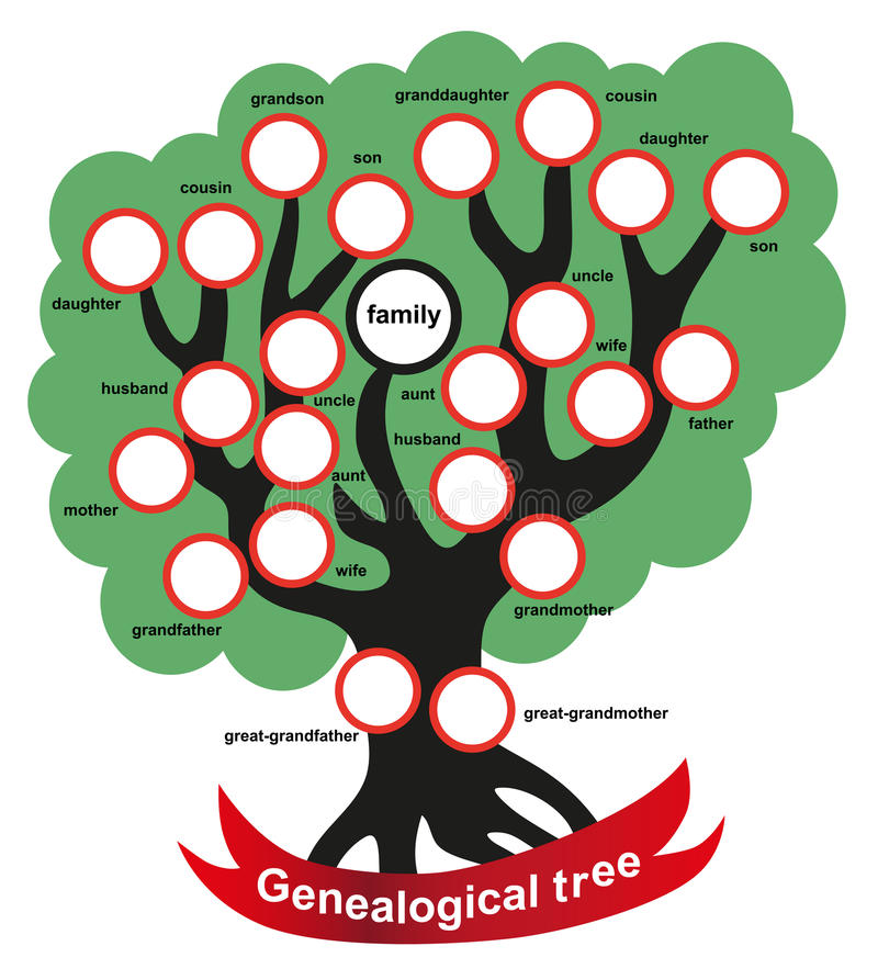 Genealogiczny drzewo ilustracji