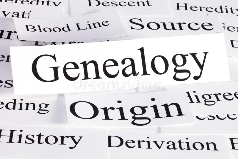 Genealogie-Konzept in den Wörtern lizenzfreie stockfotografie