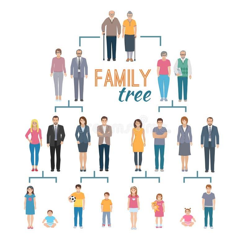 Genealogy Tree Illustration stock illustration
