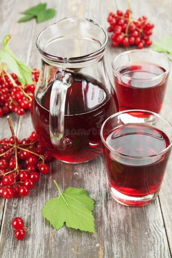 Geneeskrachtige drank verse viburnum stock afbeeldingen