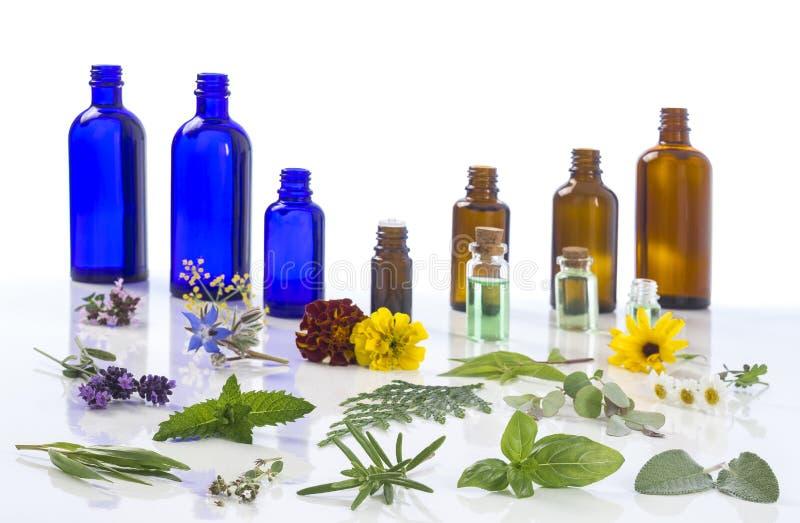 Geneeskrachtige installatie en bloemselectie, pepermunt, passiebloem, salie, thyme, lavendel, marygold, citroenbalsem met stock foto