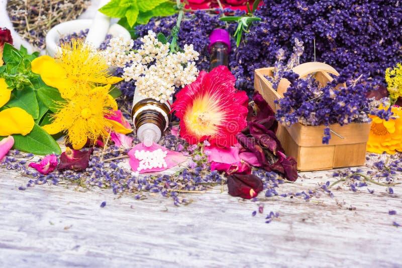 Geneeskrachtige installaties, druppeltjes, Homeopathie stock afbeelding