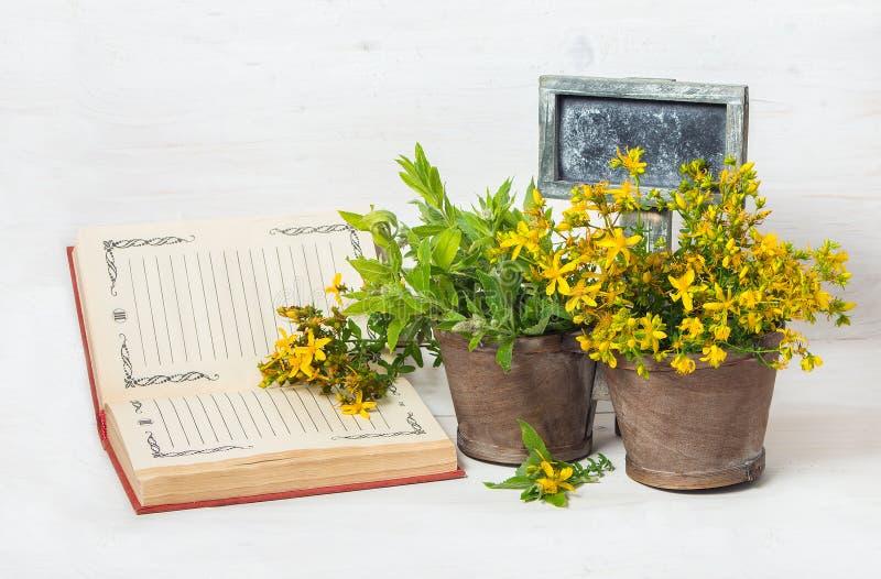 Geneeskrachtige kruiden in de pot en de tablet voor tekst stock foto