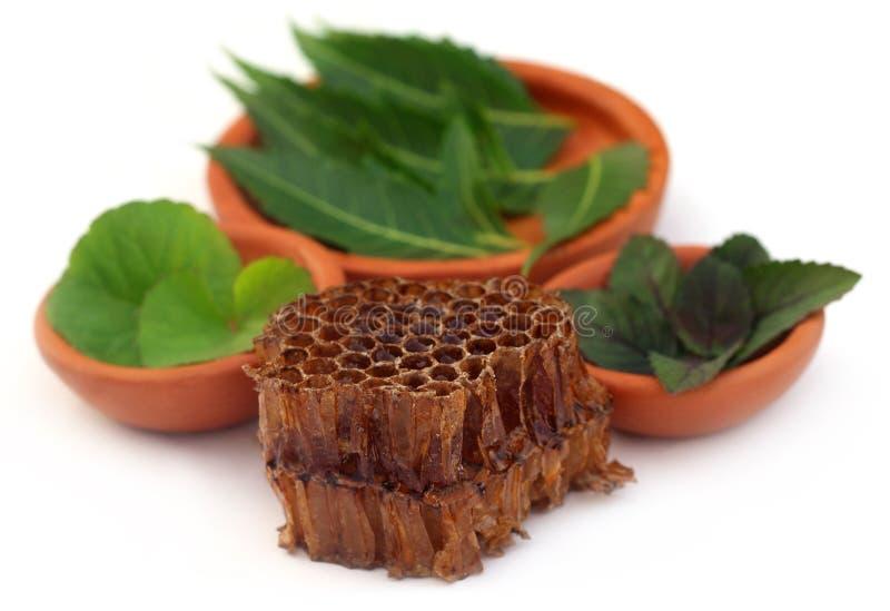 Geneeskrachtige kruiden met honingskam stock afbeelding
