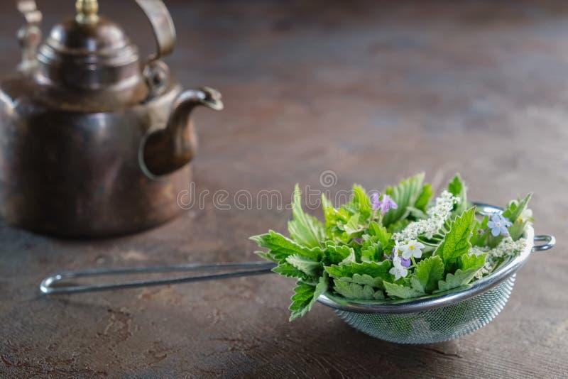 Geneeskrachtige kruiden in thee infuser en de uitstekende ketel van de koperthee Kruiden perforatum Medicine stock afbeelding