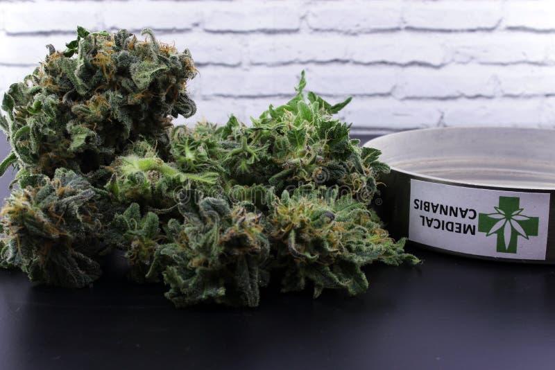 Geneeskrachtige marihuanaknoppen en cannabiszaden royalty-vrije stock foto