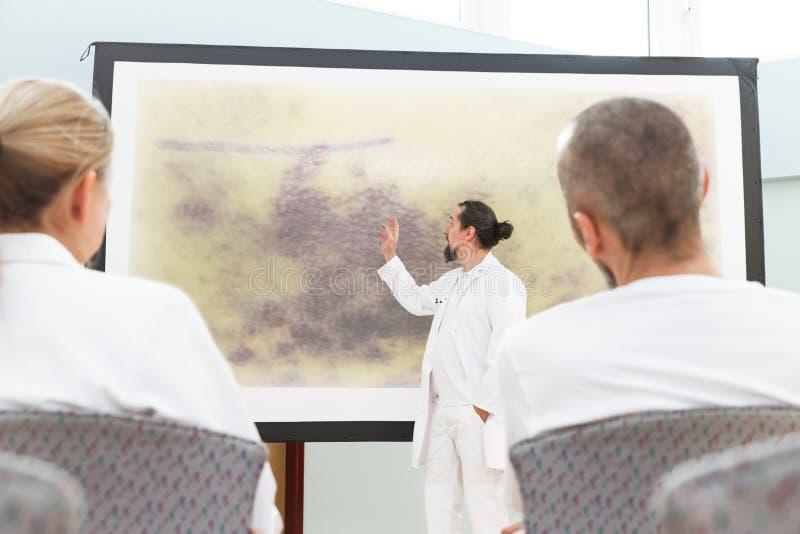 Geneeskundepersoneel die een vergadering hebben royalty-vrije stock foto