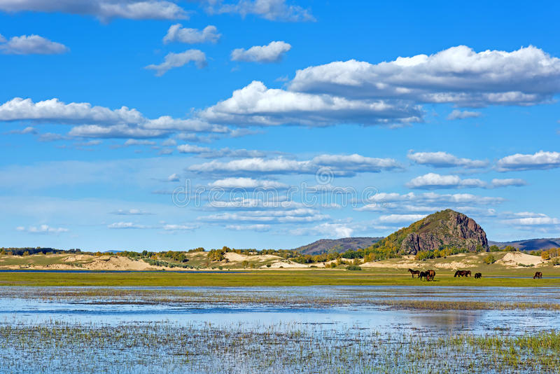 The general Lake in WulanBu all grassland ancient battlefield royalty free stock photo