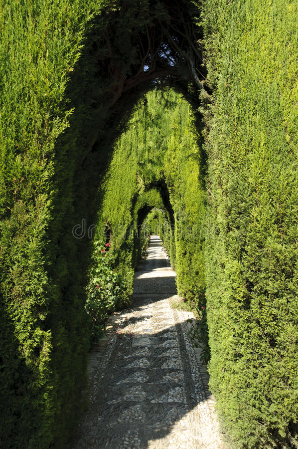 Generalife gardens in Granada, Spain stock images