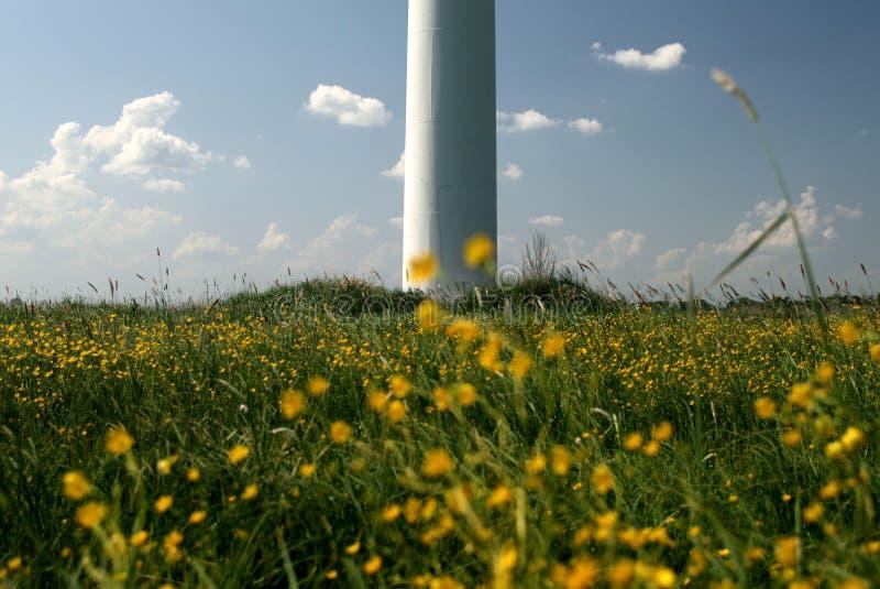 Generatore eolico in fiori del campo fotografia stock