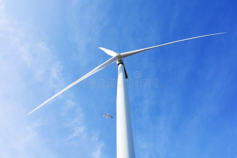 Generatore eolico, Ness Point, Lowestoft, Suffolk, Regno Unito fotografia stock libera da diritti