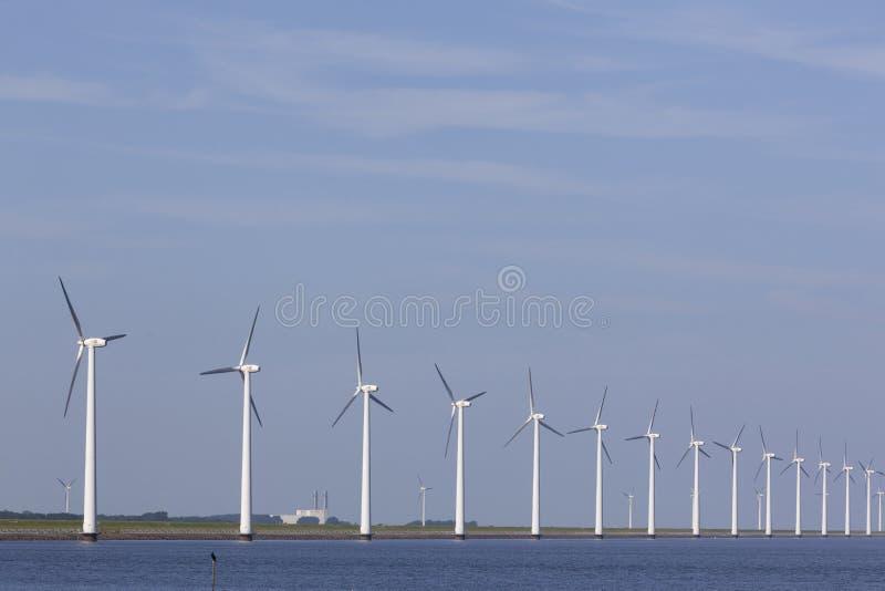 Generatori eolici contro cielo blu fuori dalla costa di Flevoland in immagine stock libera da diritti