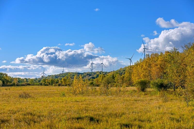 Generatori eolici e pascolo fotografie stock libere da diritti