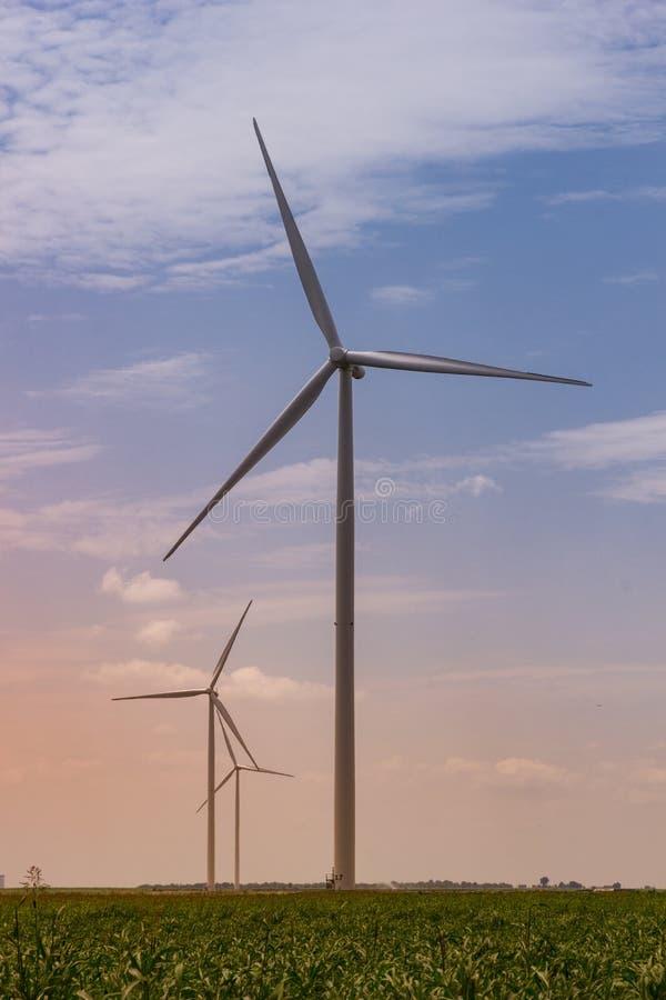 Generatori eolici maestosi al tramonto fotografia stock libera da diritti