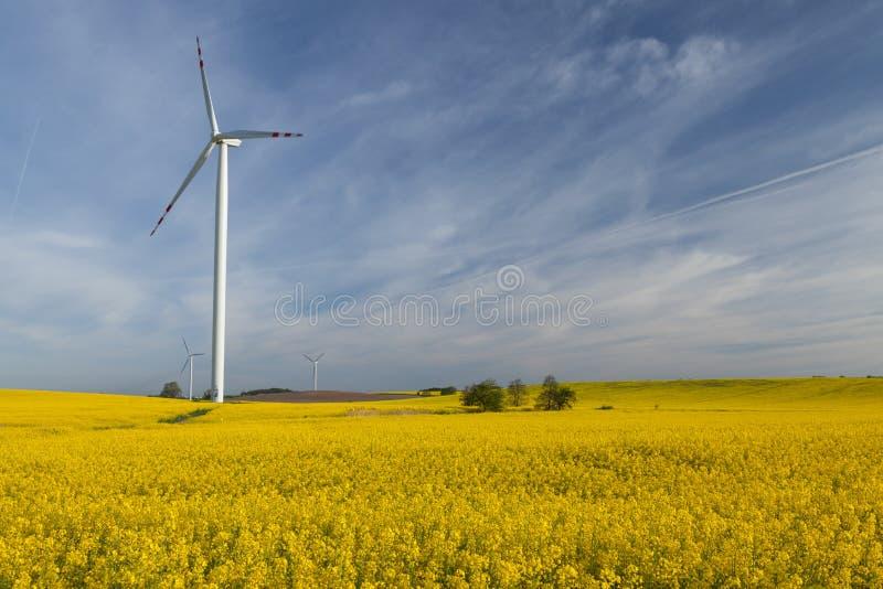 Download Generatori Eolici, Potere Di Eco Immagine Stock - Immagine di poland, industria: 56890147