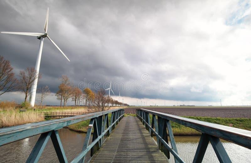 Generatori eolici su terreno coltivabile olandese in sole immagine stock libera da diritti