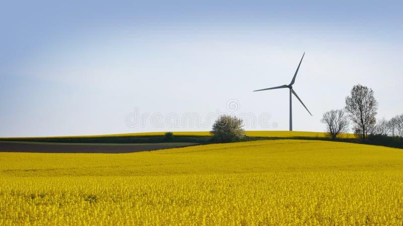 Generatori eolici in Svezia fotografia stock libera da diritti