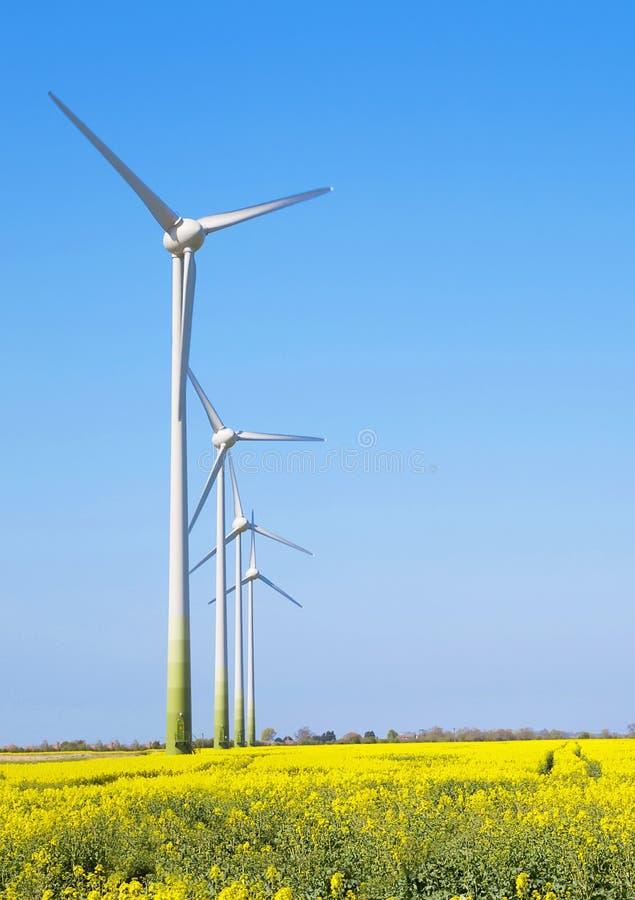 Generatori eolici in una linea fotografia stock libera da diritti