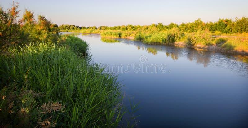 Genere sul fiume con il litorale verde immagini stock