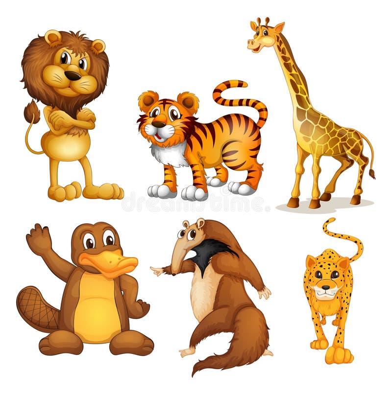 Generi differenti di animali di terra illustrazione di stock