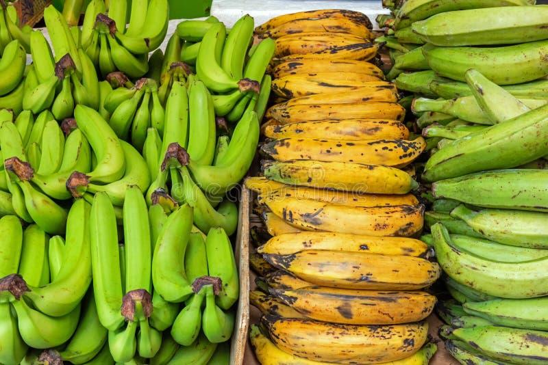Generi differenti di banane da vendere fotografia stock libera da diritti